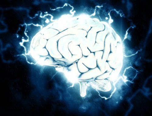 Trening (dla) mózgu