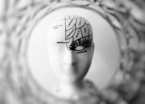 mózg głowa