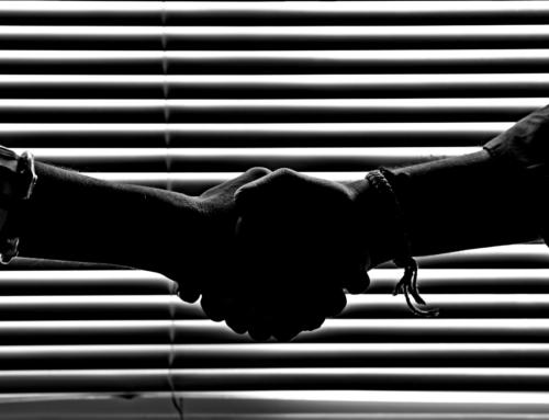 Dorota tkwi w szczegółach: Co komunikujemy uściskiem dłoni?